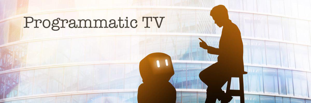 テレビのプログラマティック取引予測